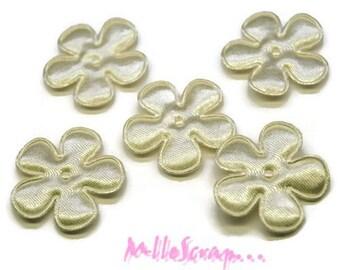 Set of 5 small flowers fabric satin cream embellishment scrapbooking (ref.310). *.