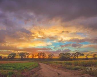 A Farm Sunset - Clouds - Trees - Colorado - Farm - Sunset - Colors