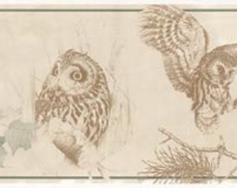 Owl Wallpaper Border B76351