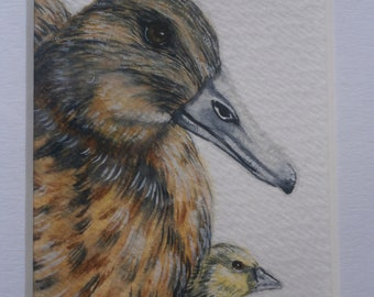 Original watercolour mounted aceo of a mother duck with duckling