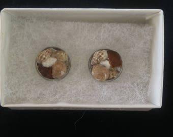 "Amber Seaglass & Seashell EARRINGS: ""Mermaids Treasure Style"""