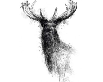 Red stag | Limited edition fine art print from original drawing. Free shipping.