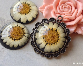 25 mm Round Shape Dried Flowers Black Base Sunflower Print Flat Back Resin Cabochons (.gm)