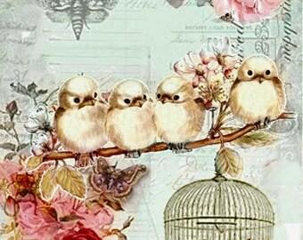 Vintage Pink Roses Birds Birdcage Butterfly Graphic Image Art Fabric Block Doodaba