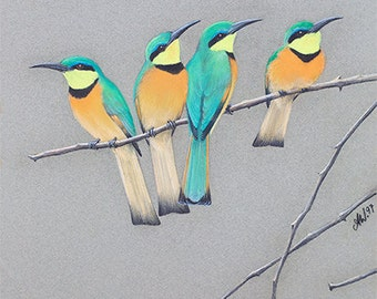 Family BIRD ARTWORK Realistic 'Little Bee-Eaters' Group flock Pastel DRAWING Green yellow orange Nature Wall art feathers colorful Africa