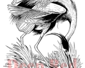 Deep Red Rubber Stamp Great Blue Heron