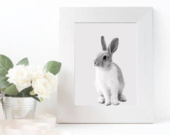 Rabbit Print, Animal Prints For Nursery, Bunny Printable, Nursery Wall Art, Animal Photography, Baby Animal Print, Bunny Poster