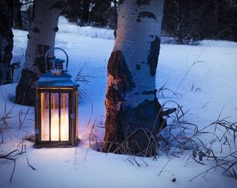 Lantern photo, aspen trees snow photo, winter wall art, snowy aspen woods photo,  ski lodge decor, log cabin art, rustic home decor, blue