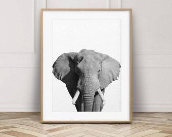 Elephant Print, African Safari Wall Art, Elephant Photo, Nursery Decor, Safari Animal Print, Black & White Animals, Kids Room Printable Art