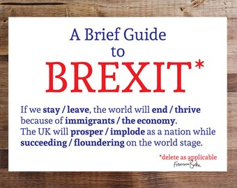 A Brief Guide to Brexit European Union Referendum Digital Download