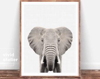 Elephant Print, Nursery Animal Print, Art Prints, Digital Print, Nursery Wall Art, Nursery Decor, Elephant Wall Art, Nursery Prints