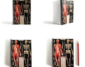 Anatomy Notebook A6 Spiral Bound