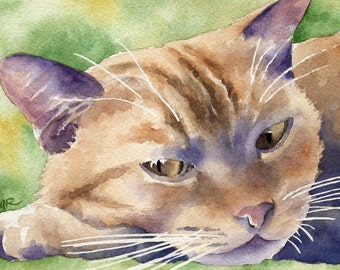 ORANGE TABBY CAT Art Print Signed by Artist D J Rogers