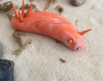 Nudibranch sea slug marine gastropoda mollusca mini marble friend in orange and white swirl