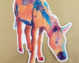Desert Rain Vinyl Sticker/Decal