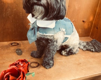 Denim Dog Harness Vest with bow tie or necktie
