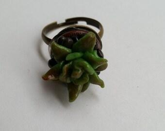 Tiny succulent ring