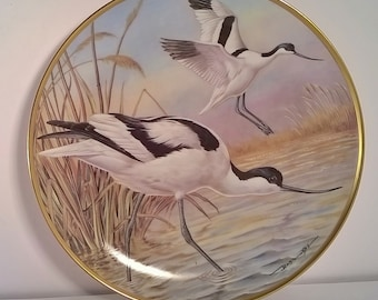 Avocet by Basil Ede Water Birds of the World Decorative Wall Plate