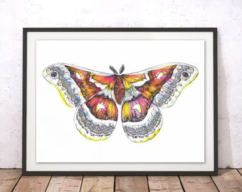 Moth Art Print, Colourful Moth Illustration, Jazz Moth Poster, Butterfly Poster, Insect Painting, Wall Art Home Decor, Moth Art by Sophie