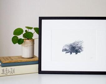 Porcupine - unframed print