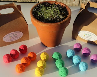 Wildflower seed bomb gift/favor- small gable box packaging- choose your color seed balls