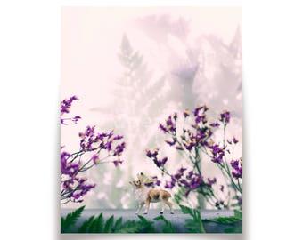 Floral Shadows 8x10 Print