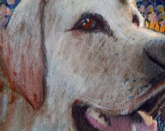 original art  aceo drawing yellow lab dog spirit animal zentangle