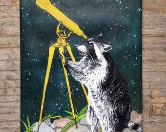 Raccoon Telescope Magnet