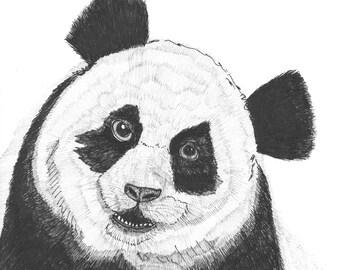panda bear portrait for inktober illustration black ink on paper animal nursery art 6 x 6