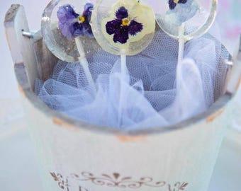 Viola Pansy Flower Lollipops - Flower Lollipop - Lollipop Favor - Viola Pansy Favor - Edible Viola Pansy - Flower Lollipop - Clear