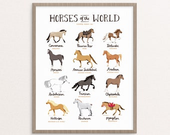 Horses of the World Art Print // Whimsical Illustration Painting Drawing Horses Pony Equestrian Chart Hand Lettered Animals Fun Poster