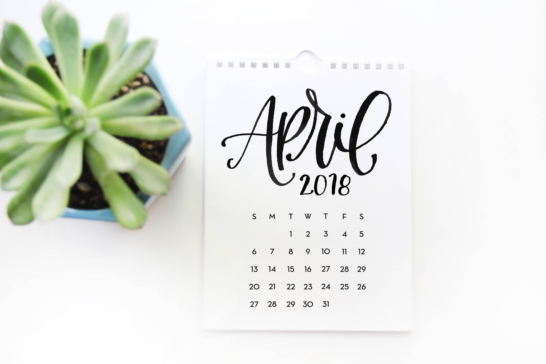 Description 2018 Black and White Wall Calendar