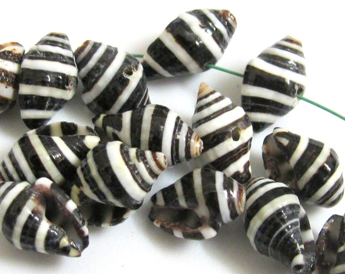 20 BEADS - Natural pyrene shell beads black and white stripes  - NB025