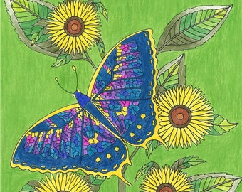 Adult Coloring Book - Beautiful Butterflies & Flowers Coloring Book- Printable Coloring Book