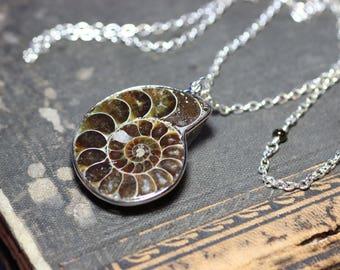 Ammonite Necklace Silver Chain Ammonite Pendant