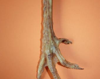 Decor - Talisman - Natural BIG Foot Charm - Lucky Chicken BIG Foot