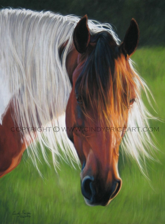 Paint Pinto Horse Print of original pastel painting drawing
