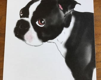 Boston Terrier 5x7 Art Print