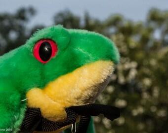 Frog Backpack-Frog Bag-Green Tree Frog-Light Up-Green Backpack-Green Frog-Frog-Backpack-Stuffed Animal-Repurposed-Upcycled-Green-Red-Bag