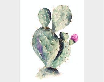 Postcard A6 - Cactus - Unique Design - SFA