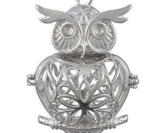 Cage bird OWL charm pendant perfume diffuser