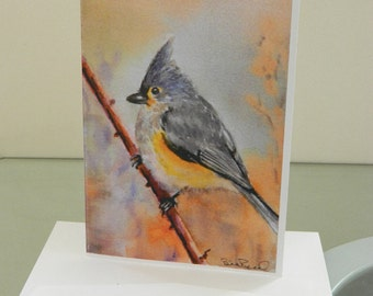 Tufted Titmouse - Set of 5 greeting cards