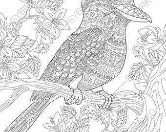 Perfect Australian Kingfisher. Coloring Pages. Animal Coloring Book Pages For  Adults. Instant Download Print