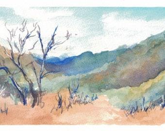 Mixed Australian Landscape