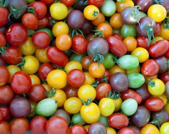 Heirloom Cherry Tomato mix, all colorful var.  15+ seeds