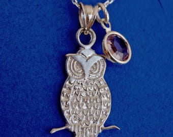 Personalized owl necklace, owl jewelry, Christmas gift, birthday gift, gift for her, birthstone necklace, owl charm, owl, bird charm, bird