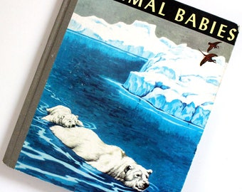 Animal Babies. Vintage 1940s children's picture book. First Edition 1949.