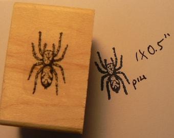 Spider rubber stamp P14