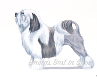 Löwchen Dog - Archival Fine Art Print - AKC Best in Show Champion - Breed Standard - Non-Sporting Group - Original Art Print