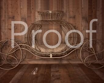 enchanted carriage digital backdrop